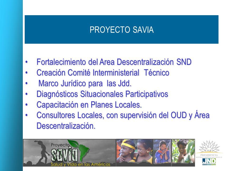 PROYECTO SAVIAFortalecimiento del Area Descentralización SND. Creación Comité Interministerial Técnico.
