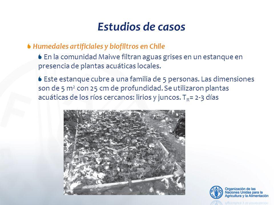 Estudios de casos Humedales artificiales y biofiltros en Chile