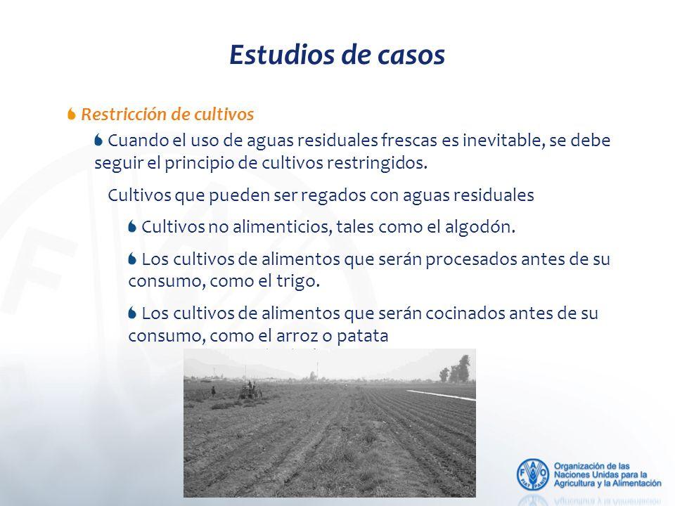 Estudios de casos Restricción de cultivos