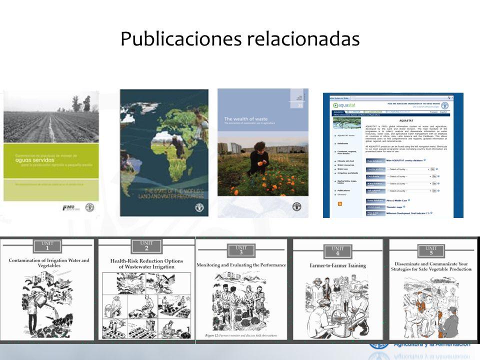 Publicaciones relacionadas