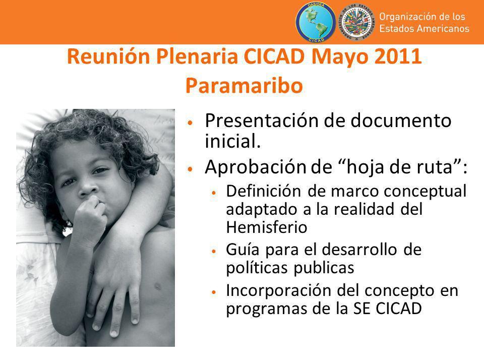 Reunión Plenaria CICAD Mayo 2011 Paramaribo