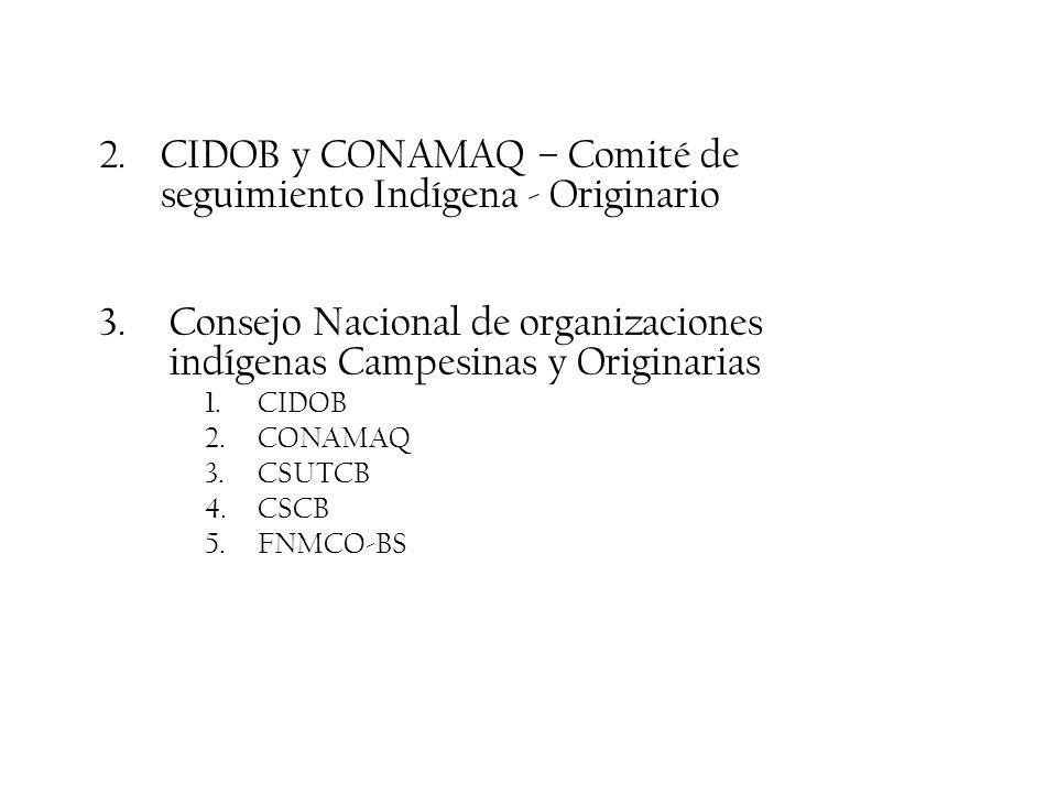 2. CIDOB y CONAMAQ – Comité de seguimiento Indígena - Originario