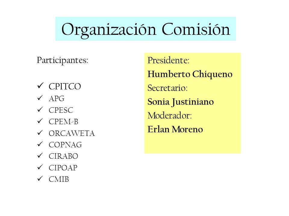 Organización Comisión
