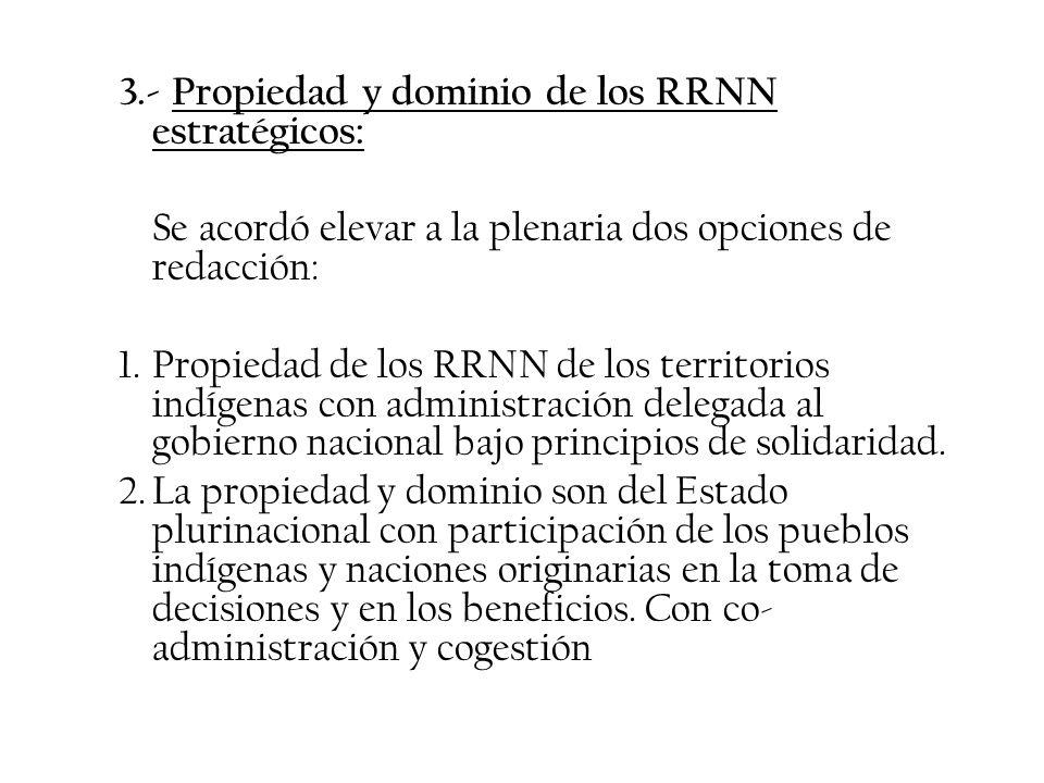 3.- Propiedad y dominio de los RRNN estratégicos:
