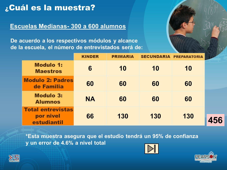Escuelas Medianas- 300 a 600 alumnos