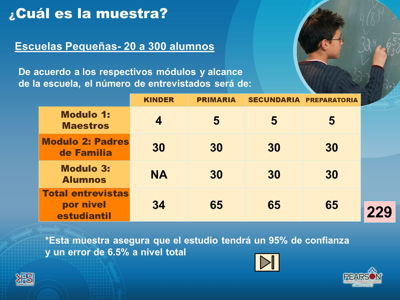 Escuelas Pequeñas- 20 a 300 alumnos