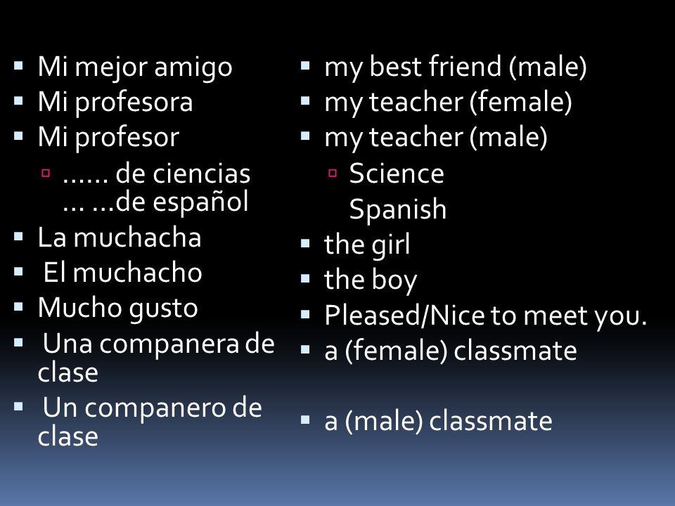 Mi mejor amigoMi profesora. Mi profesor. …… de ciencias … …de español. La muchacha. El muchacho. Mucho gusto.