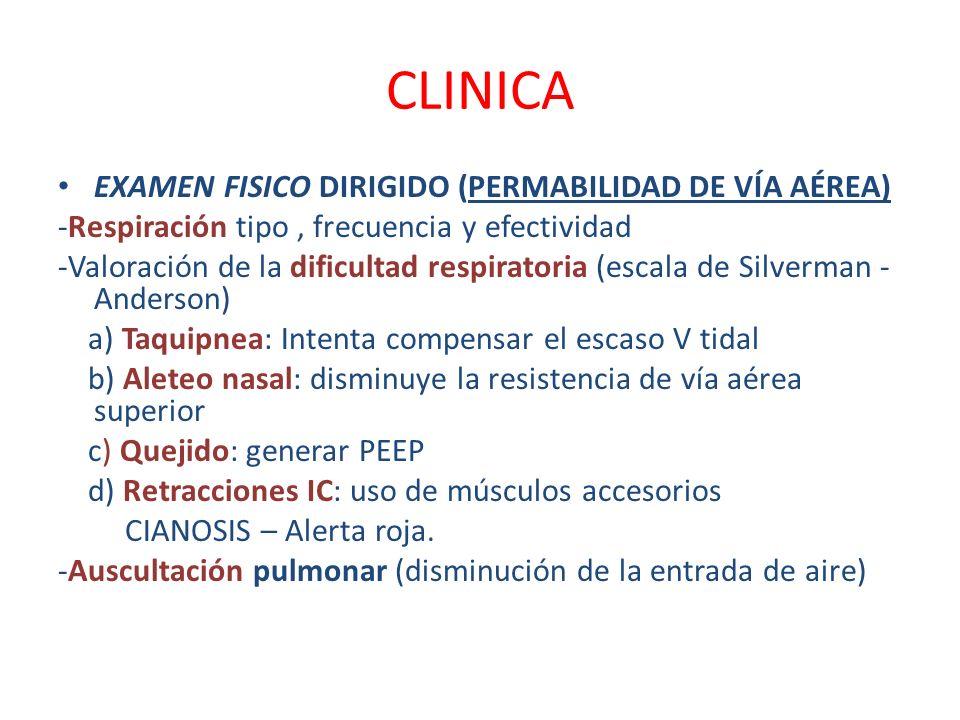 CLINICA EXAMEN FISICO DIRIGIDO (PERMABILIDAD DE VÍA AÉREA)