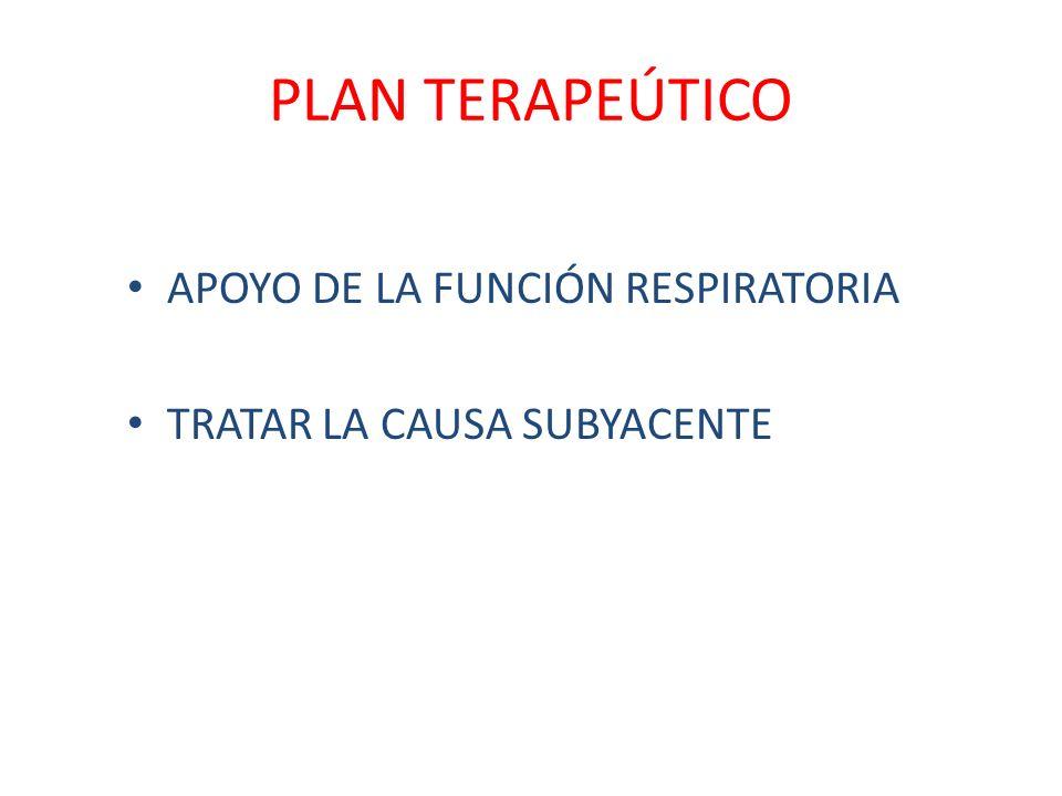 PLAN TERAPEÚTICO APOYO DE LA FUNCIÓN RESPIRATORIA