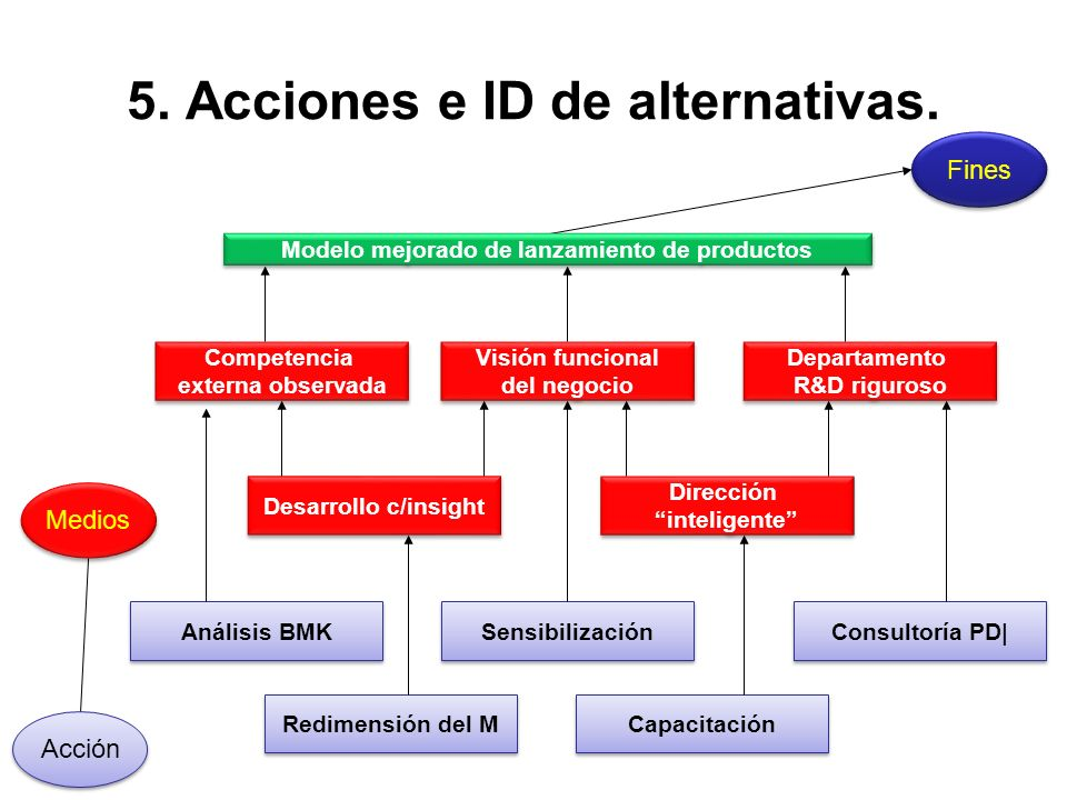 5. Acciones e ID de alternativas.