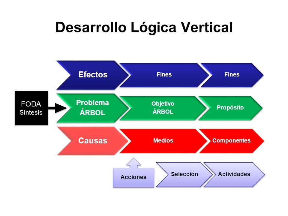 Desarrollo Lógica Vertical