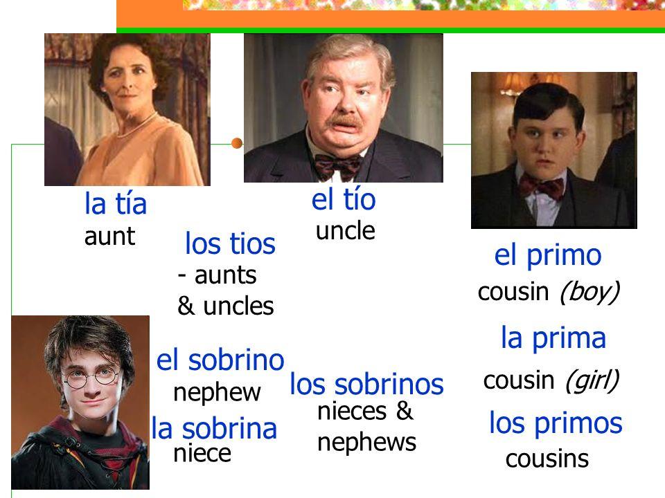 la tía el tío los tios el primo la prima el sobrino los sobrinos
