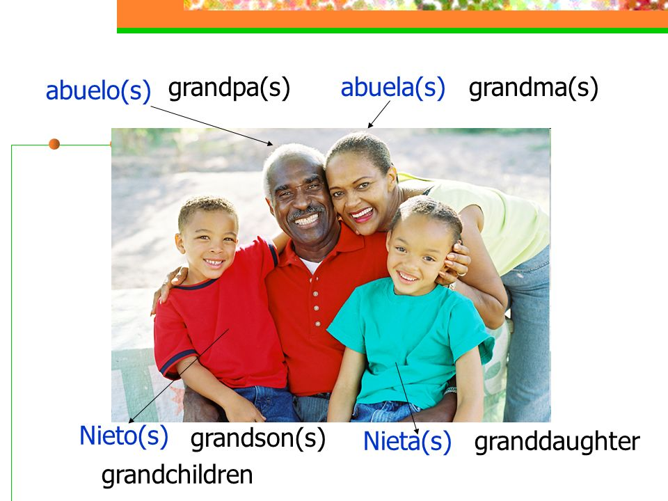 abuelo(s) grandpa(s) abuela(s) grandma(s) Nieto(s) grandson(s) Nieta(s) granddaughter grandchildren