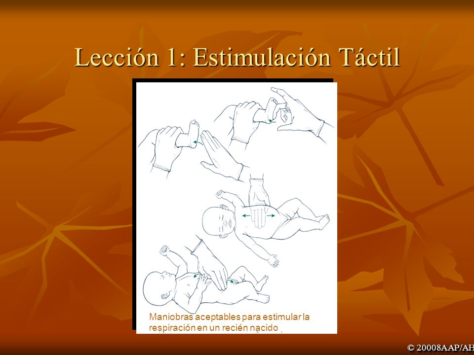 Lección 1: Estimulación Táctil