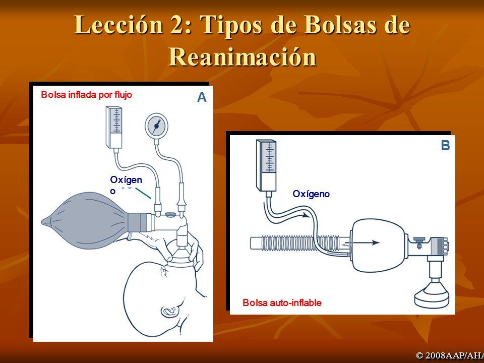 Lección 2: Tipos de Bolsas de Reanimación