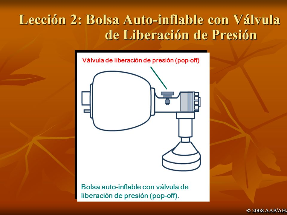 Lección 2: Bolsa Auto-inflable con Válvula de Liberación de Presión