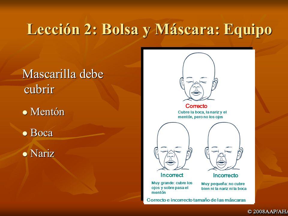 Lección 2: Bolsa y Máscara: Equipo