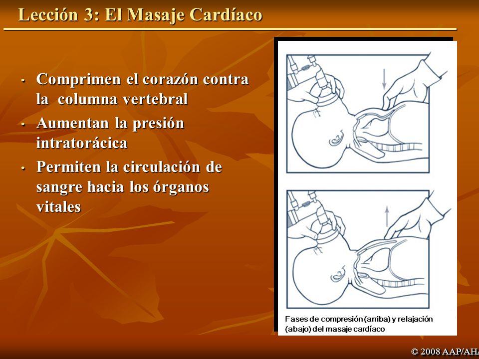 Lección 3: El Masaje Cardíaco