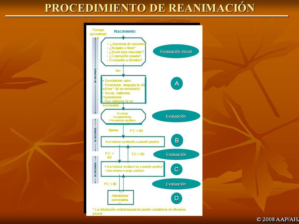 PROCEDIMIENTO DE REANIMACIÓN