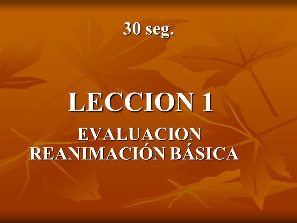 30 seg. LECCION 1 EVALUACION REANIMACIÓN BÁSICA