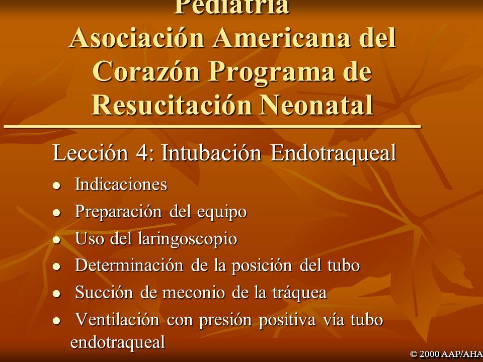 Academia Americana de Pediatría Asociación Americana del Corazón Programa de Resucitación Neonatal