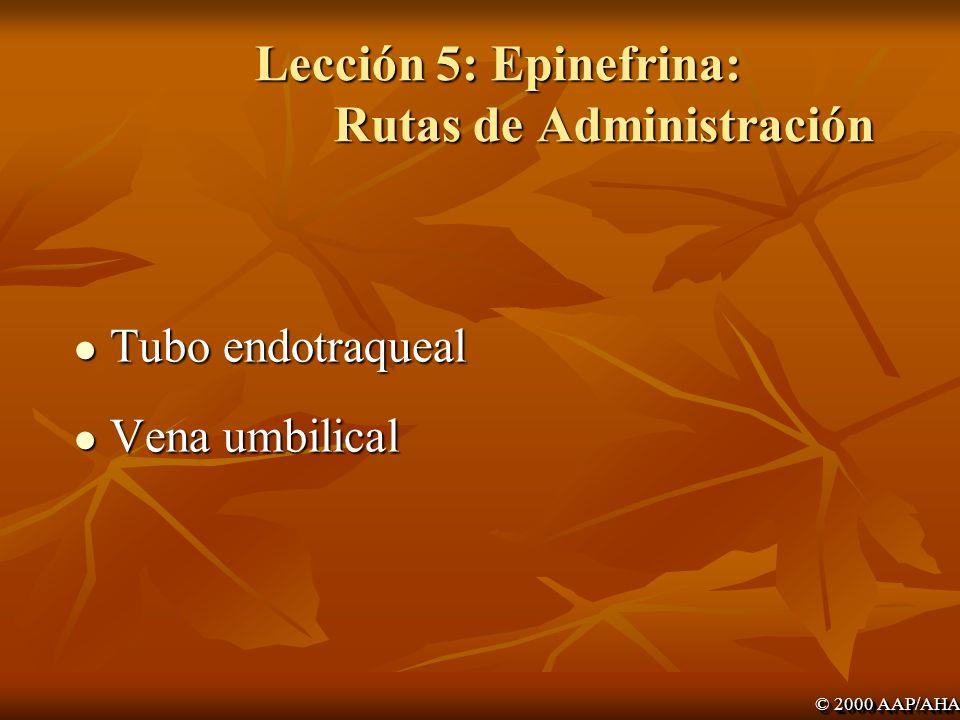 Lección 5: Epinefrina: Rutas de Administración