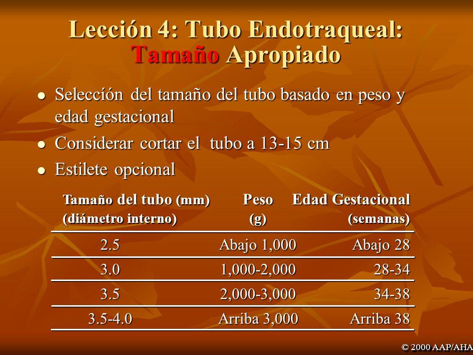 Lección 4: Tubo Endotraqueal: Tamaño Apropiado