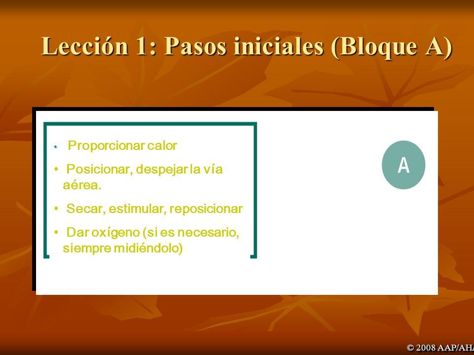 Lección 1: Pasos iniciales (Bloque A)