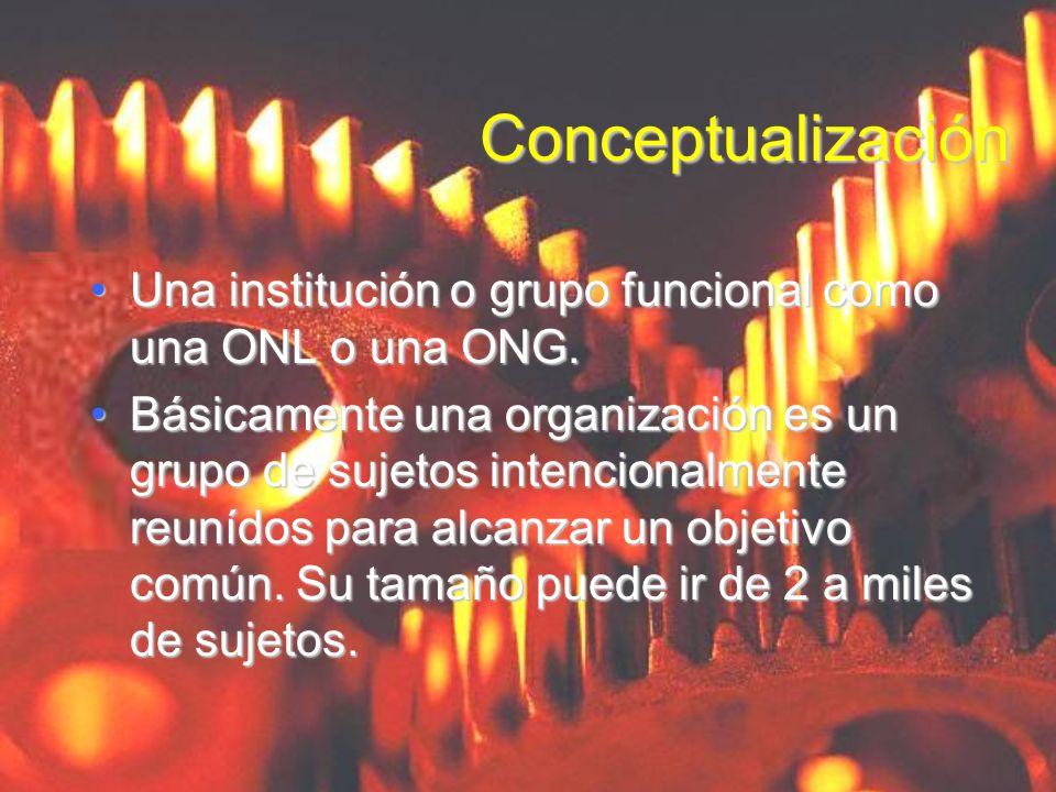 ConceptualizaciónUna institución o grupo funcional como una ONL o una ONG.