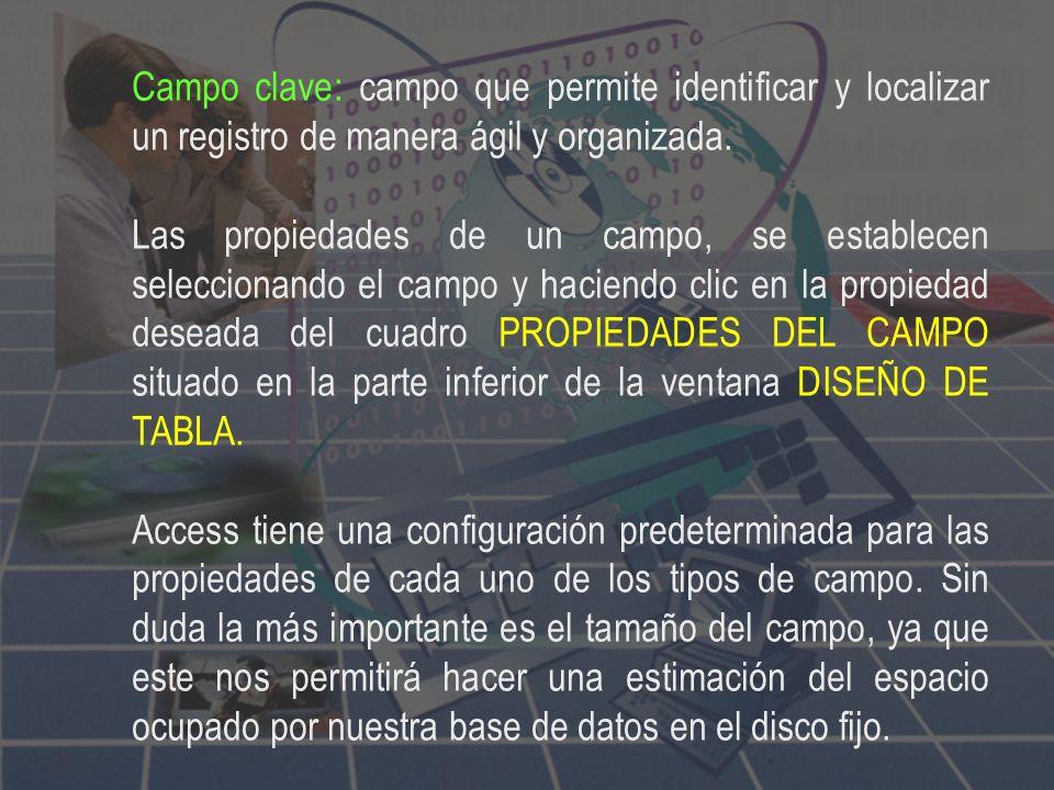 Campo clave: campo que permite identificar y localizar un registro de manera ágil y organizada.