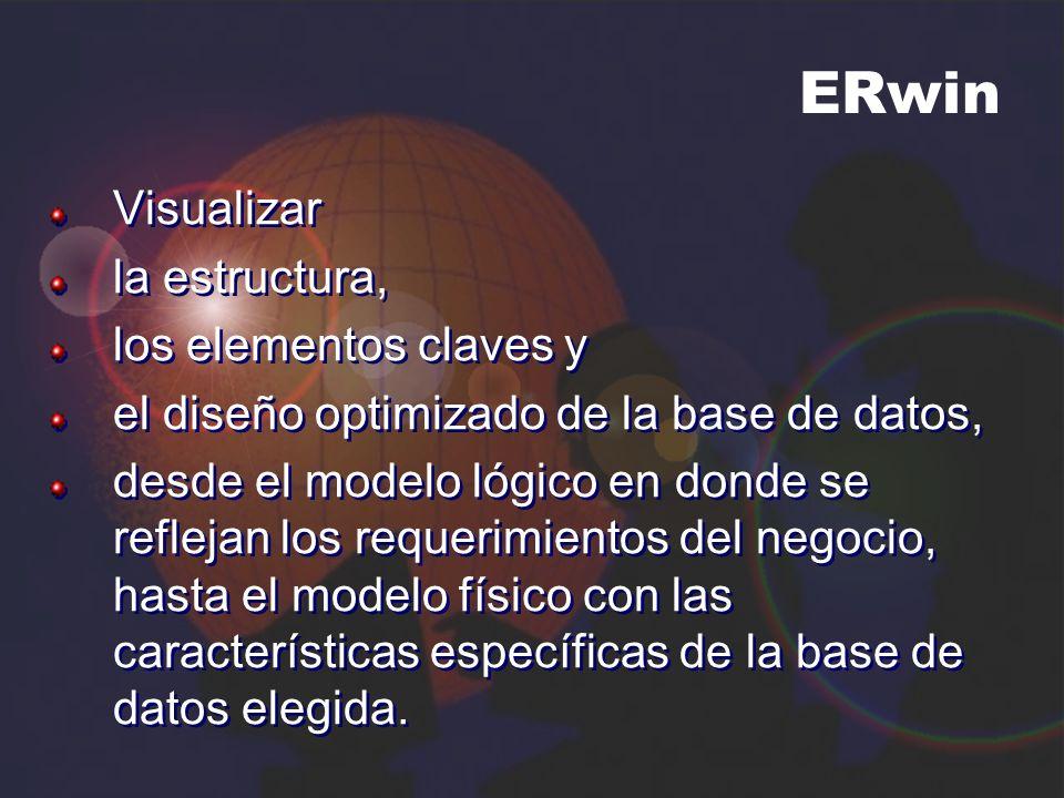 ERwin Visualizar la estructura, los elementos claves y