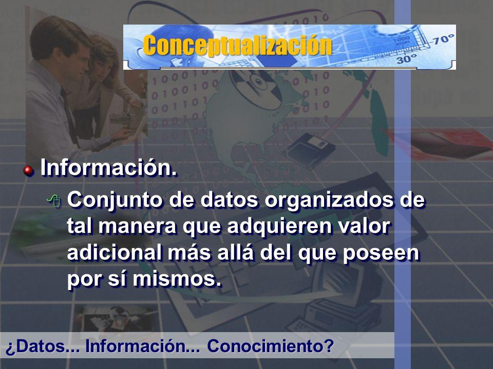 Conceptualización Información.