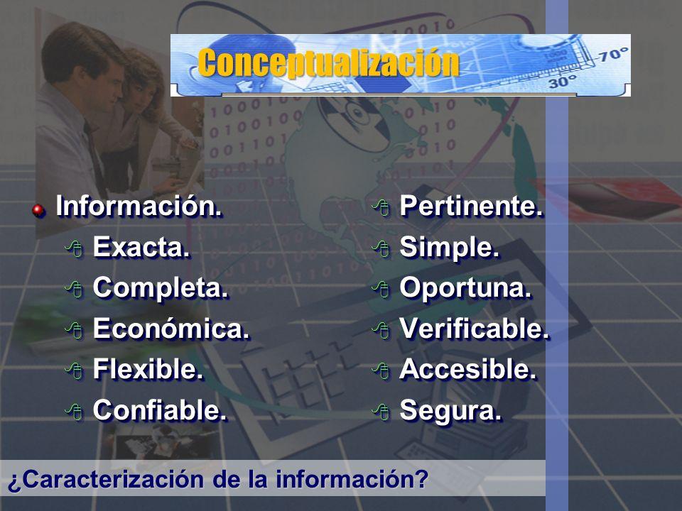 Conceptualización Información. Exacta. Completa. Económica. Flexible.