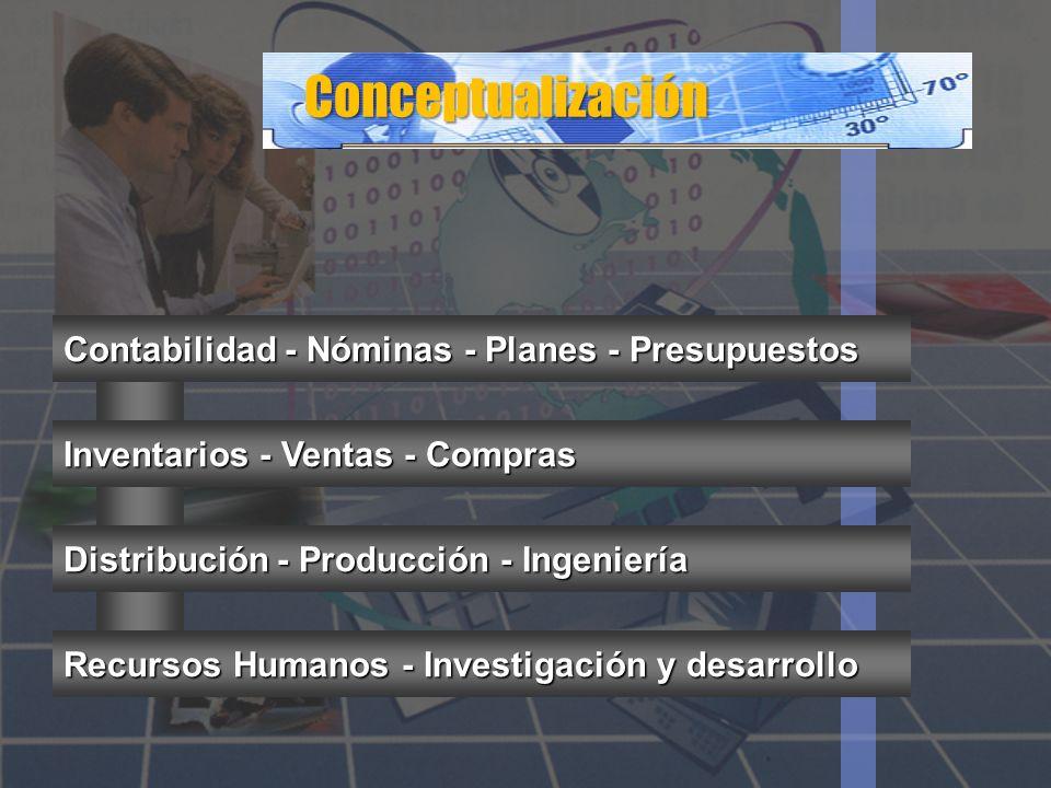 Conceptualización Contabilidad - Nóminas - Planes - Presupuestos