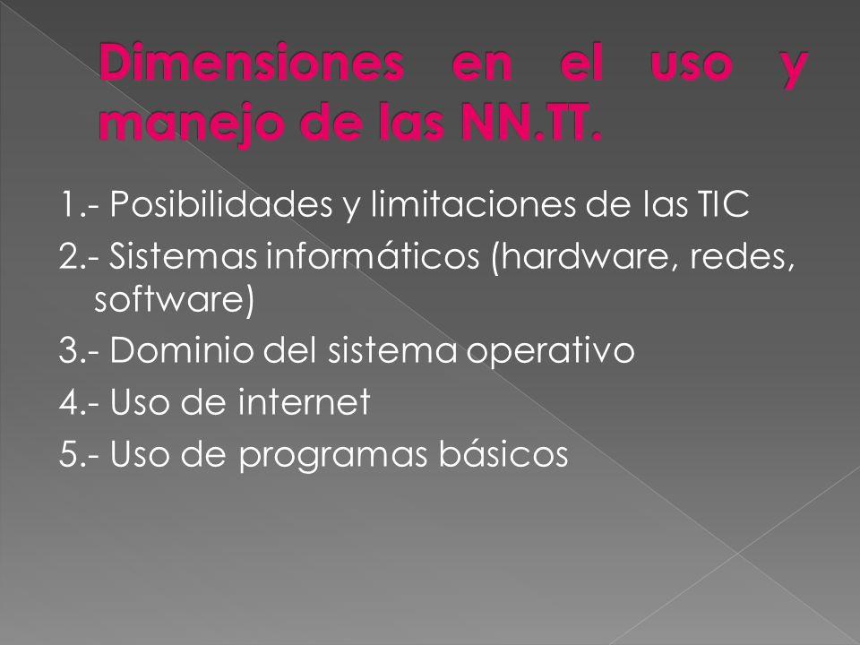 Dimensiones en el uso y manejo de las NN.TT.