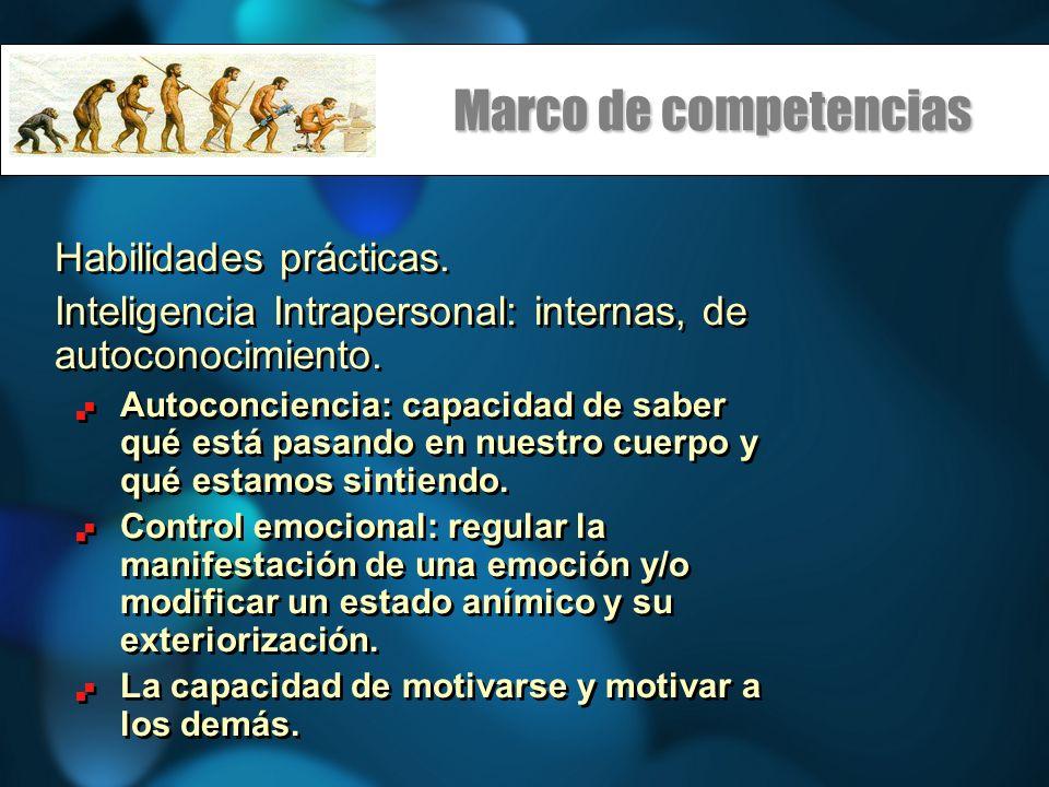 Marco de competencias Habilidades prácticas.