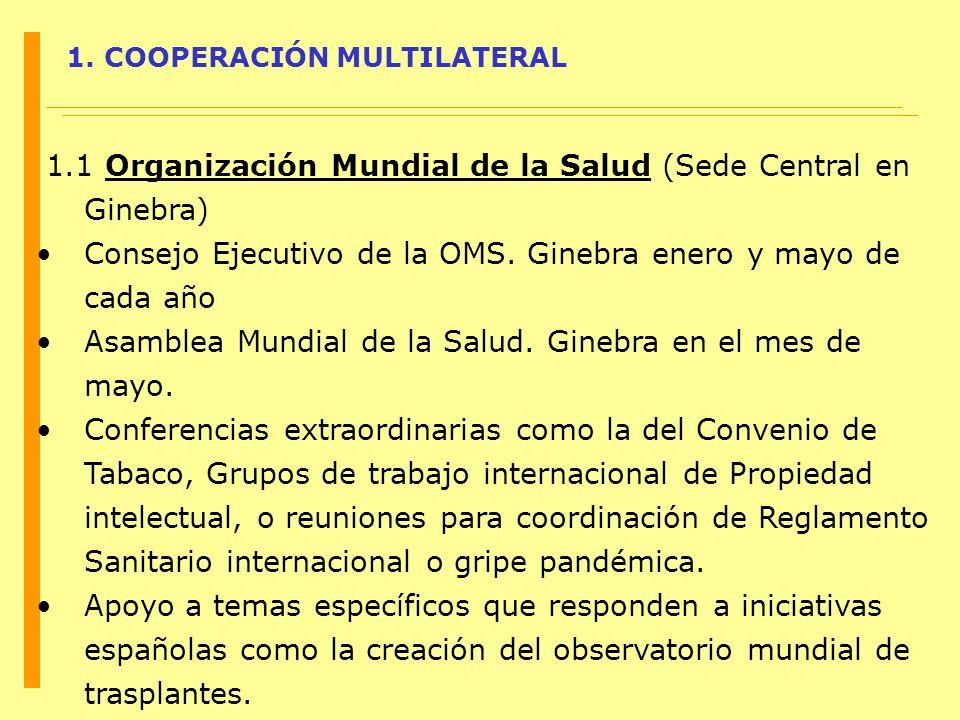 1.1 Organización Mundial de la Salud (Sede Central en Ginebra)