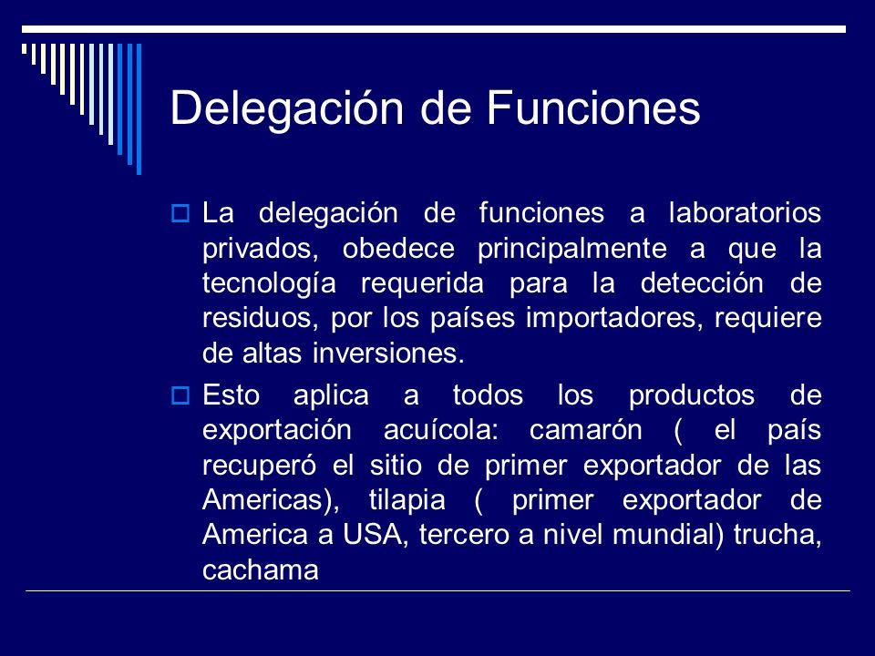 Delegación de Funciones