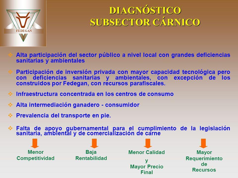 DIAGNÓSTICO SUBSECTOR CÁRNICO