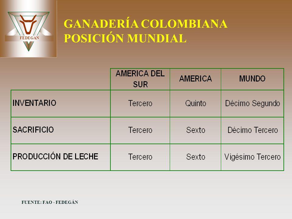 GANADERÍA COLOMBIANA POSICIÓN MUNDIAL