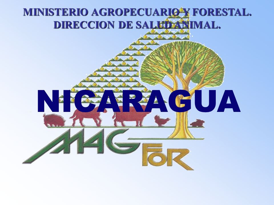 MINISTERIO AGROPECUARIO Y FORESTAL. DIRECCION DE SALUD ANIMAL.
