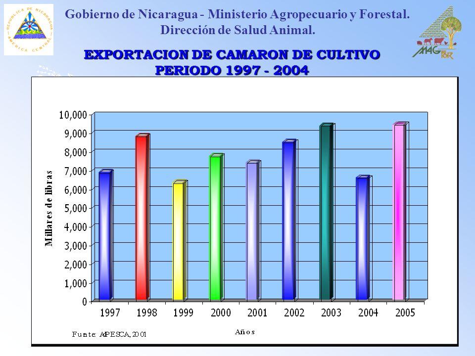 EXPORTACION DE CAMARON DE CULTIVO PERIODO 1997 - 2004