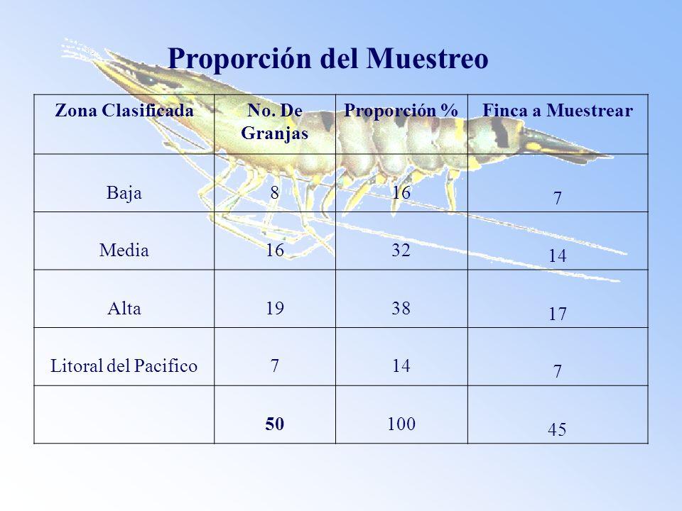 Proporción del Muestreo