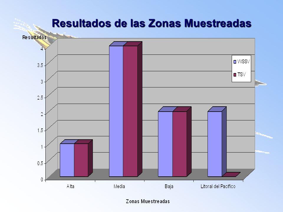 Resultados de las Zonas Muestreadas