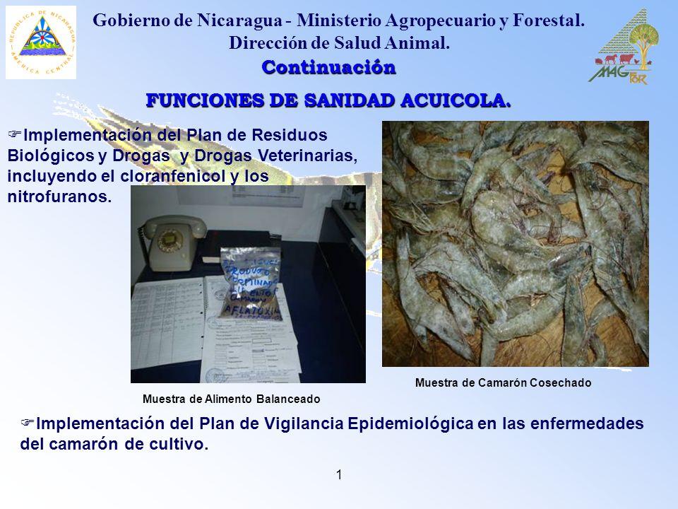 FUNCIONES DE SANIDAD ACUICOLA.