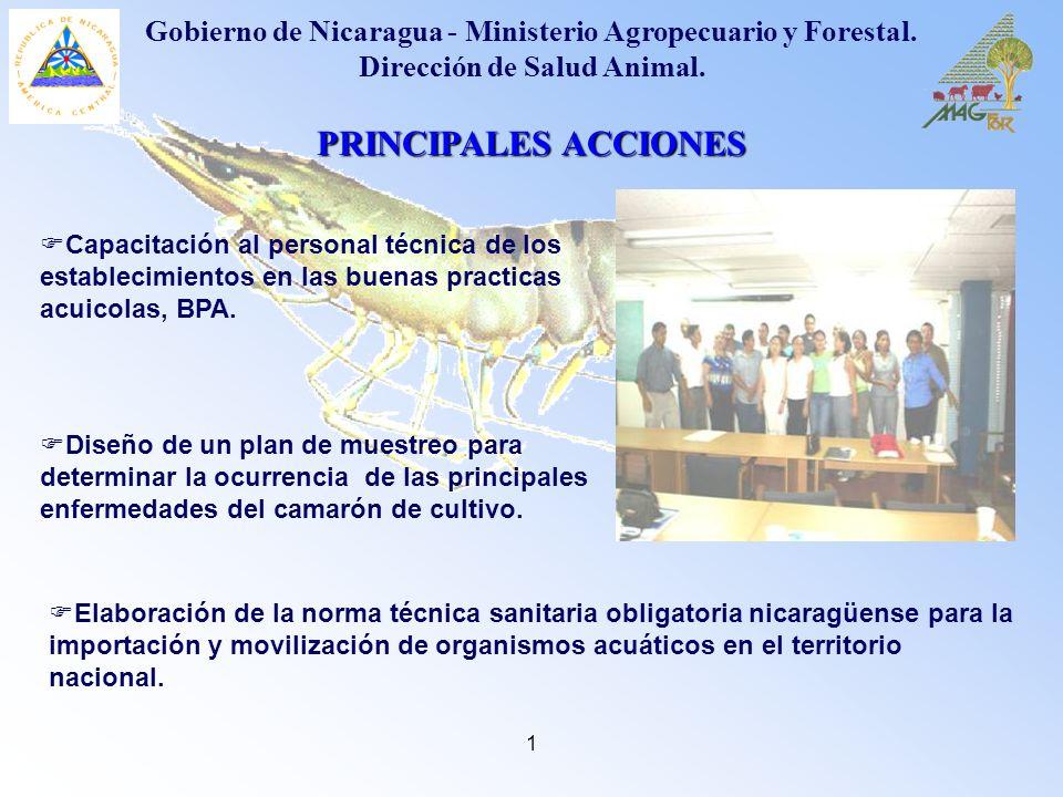 Gobierno de Nicaragua - Ministerio Agropecuario y Forestal