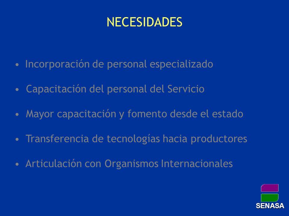 NECESIDADES Incorporación de personal especializado