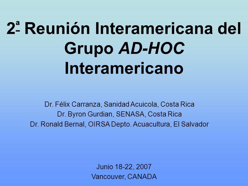 2ª Reunión Interamericana del Grupo AD-HOC Interamericano