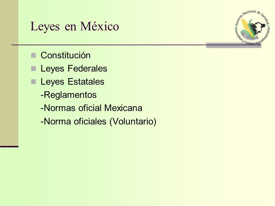 Leyes en México Constitución Leyes Federales Leyes Estatales
