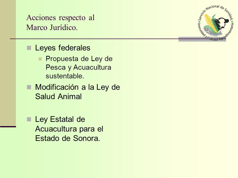 Acciones respecto al Marco Jurídico.